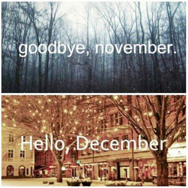 Superior 30 Something Urban Girl: Goodbye, November   Hello, December