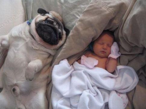 Look I can sleep like the baby!!