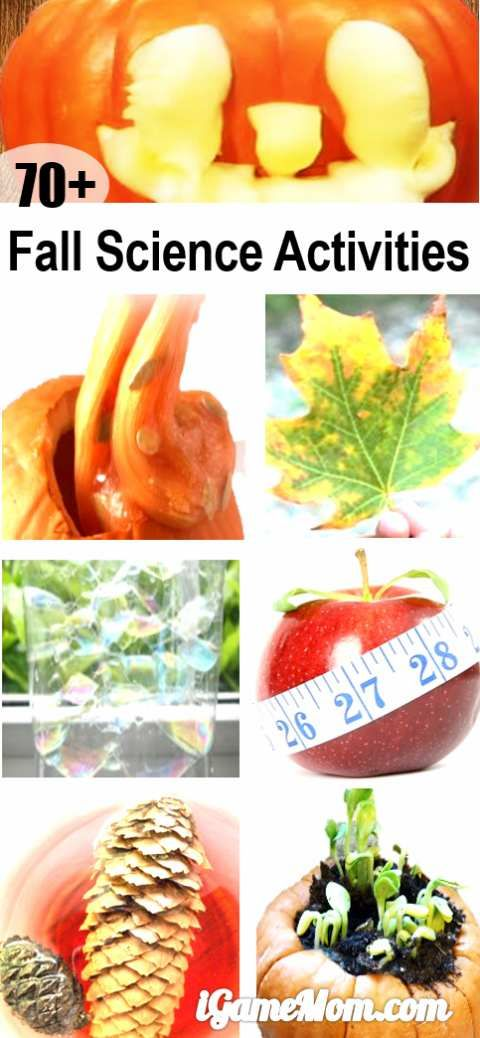Fall themed science activities for kids: pumpkins, leaves, apples, pine cones, sun, moon, stars, wind, rain, … and more. Wonderful STEM resource for classroom, homeschool or after school enrichment.