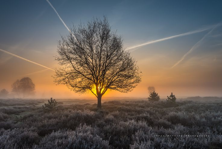 'a magical sunrise' - A magical sunrise near Saint Anthonis, a small village in North Brabant.