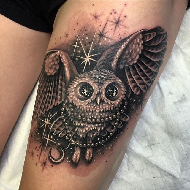 gorgeous owl ryan ashley malarkey