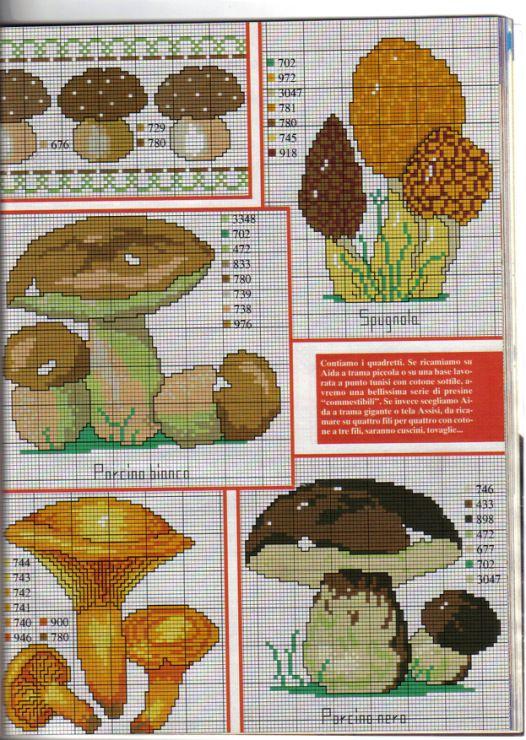 Gallery.ru / Фото #36 - Грибы (mushrooms) - irislena