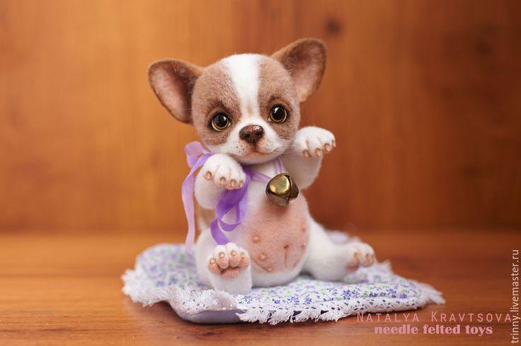 Купить Чихуахуа Баффи. Валяная тедди игрушка - бежевый, белый, коричневый, Глаза, чихуашка, чихуахуа