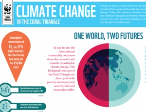 Climate Change Infographic : WWF's Coral Triangle