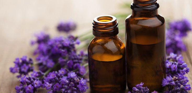 Θεραπεία με ένα χαλαρωτικό ρόφημα λεβάντα ή αιθέριο έλαιο λεβάντα θα πρέπει να κάνετε όσοι υποφέρετε από τα νεύρα σας, ώστε να είστε ήρεμοι και να αποφεύγετε καυγάδες στην καθημερινή σας ζωή...