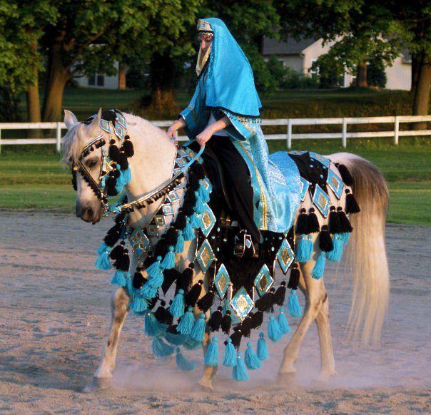 Lovely! (Chelsey's Custom Native Arabian Horse Costumes)