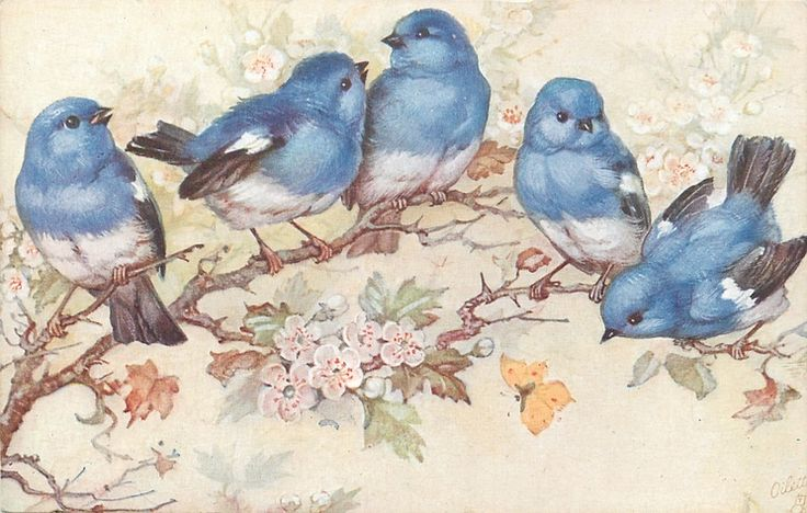 five blue birds on blossom tree, yellow butterfly below (this is not a printable, but a postcard - I want the whole set! - pinning here because when I am looking for something like this, I will probably look in printables first) *********************************** Tuckdb.org #bluebirds