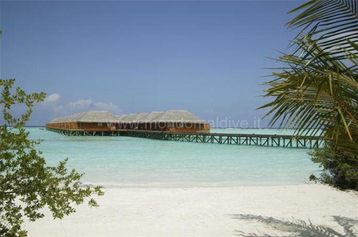 Vilamendhoo Maldive 040