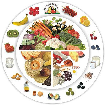 Travailler l'alimentation au cycle 2