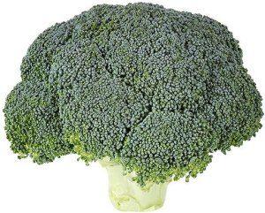 #Brocoli verdura muy digestiva.