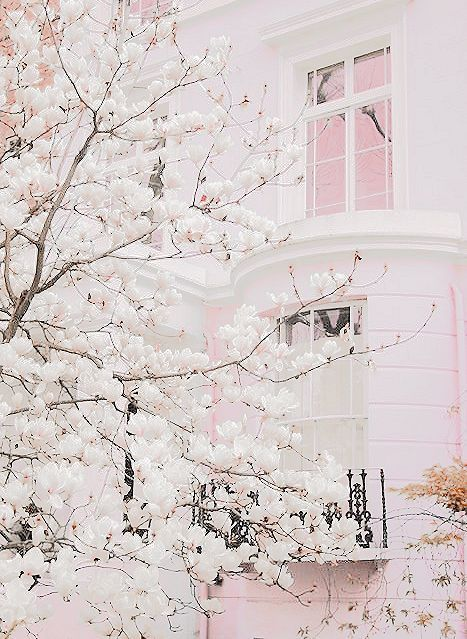 Designing with pink and blossoms.