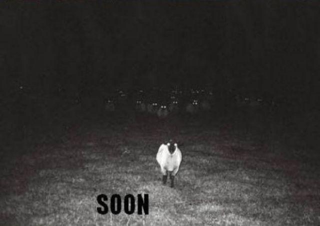 """Soon"" Meme Collection (17 pics) - Izismile.com"