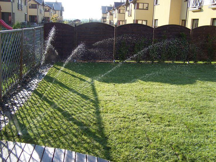 Trawnik z rolki + nawodnienie