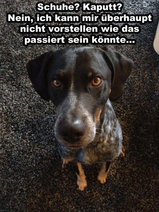 schuhe-kaputt                                                                                                                                                                                 Mehr
