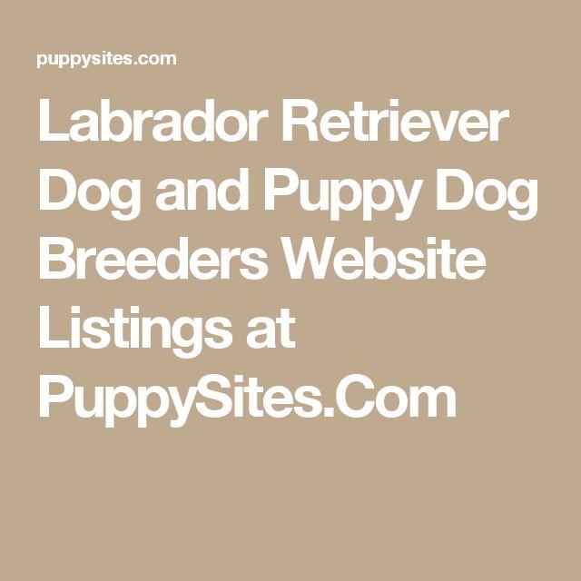 Labrador Retriever Dog and Puppy Dog Breeders Website Listings at PuppySites.Com