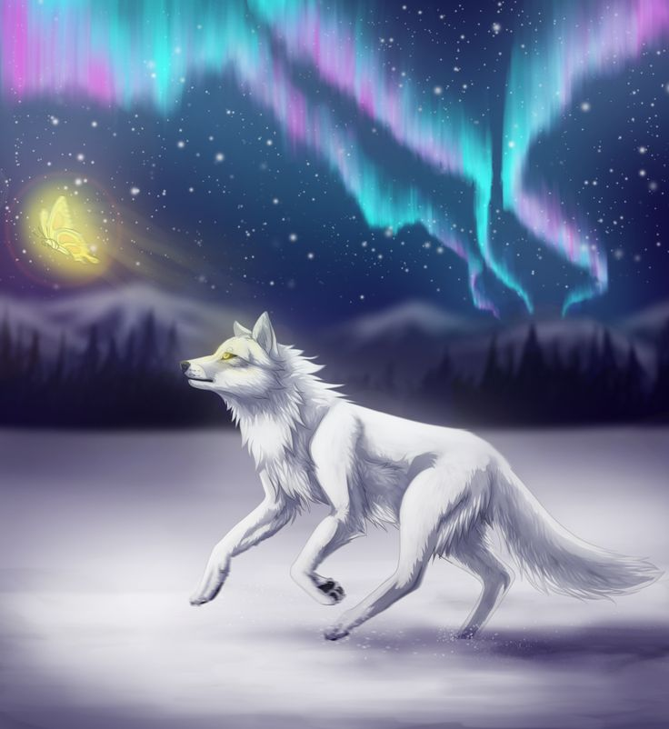 Wolves And Northern Lights / (Beneath The Borealis By