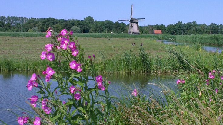 Oudorp, the Netherlands.