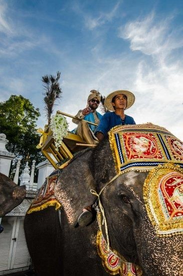 groom entering on an elephant baraat