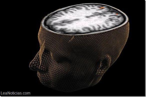 Hacer juicios de valor aumenta la materia gris del cerebro - http://www.leanoticias.com/2015/06/05/hacer-juicios-de-valor-aumenta-la-materia-gris-del-cerebro/