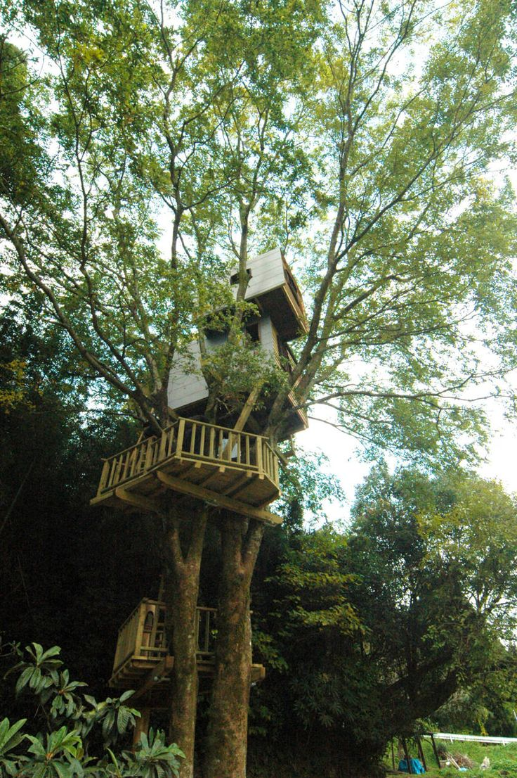 Vintage Takashi Kobayashi Tree House Master