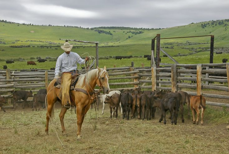 Montana Ranch for Sale | Hall and Hall Blog montana ranches. Absolutely stunning