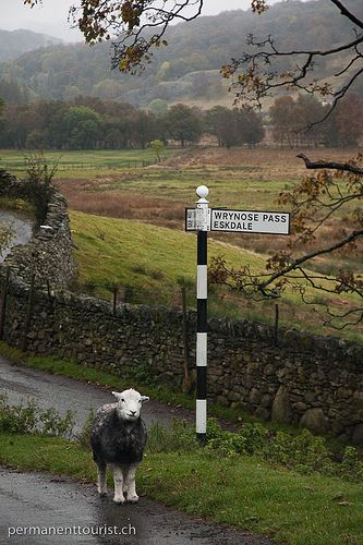On the way to Wrynose Pass, Cumbria, England by Mark Howells-Mead | mhm.li, via Flickr