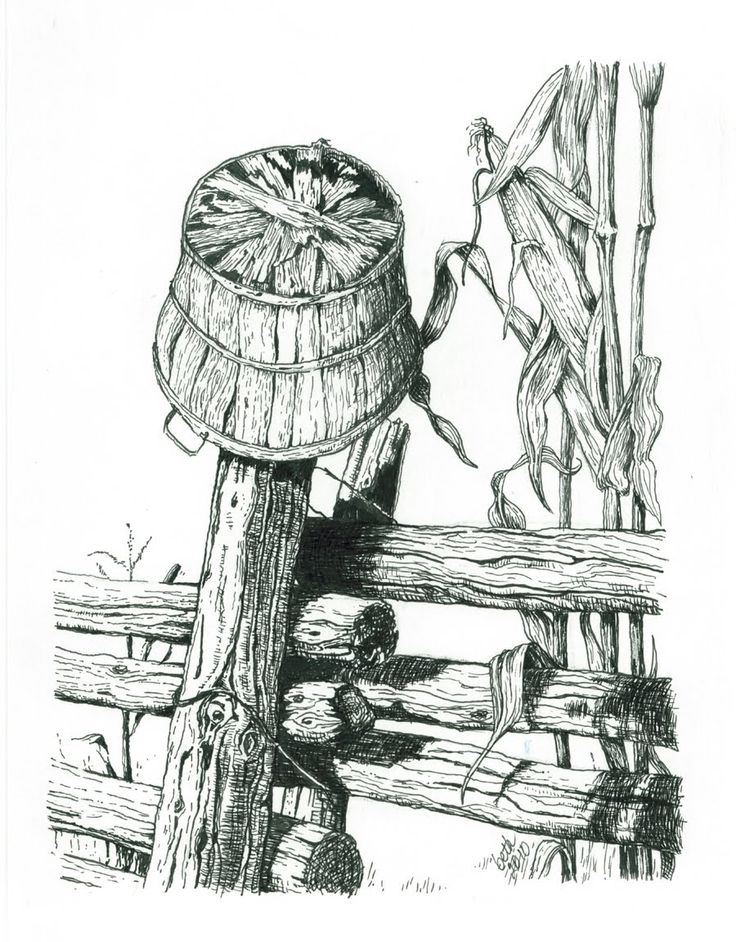 pen and ink drawing ideas | Pen & Ink Workshop