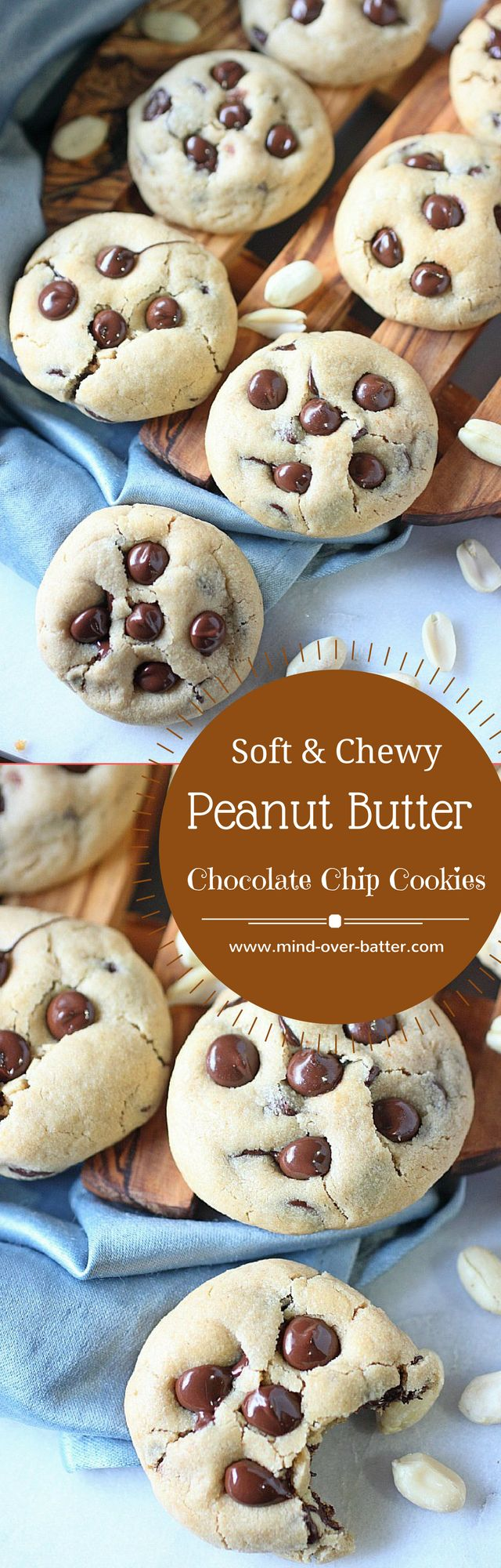 Sfot and Chewy Peanut Butter Chocolate Chip Cookie Recipe -- www.mind-over-batter.com