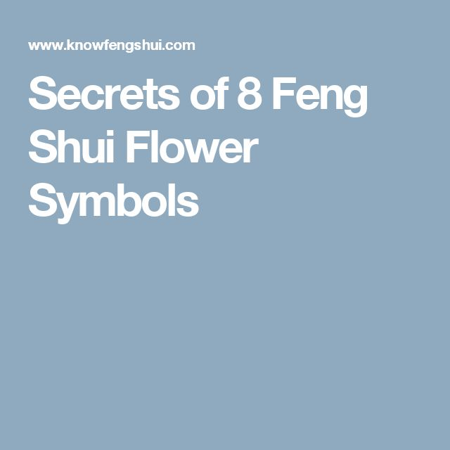 Feng Shui Kit For Health Luck Feng Shui Gift Feng Shui Good Health