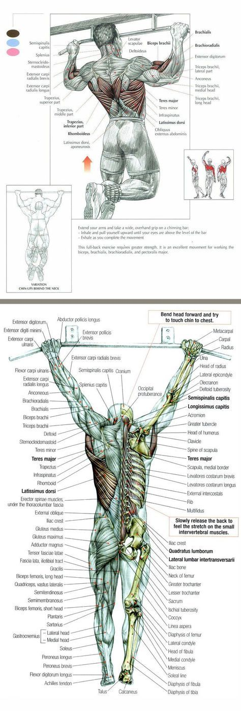 martial arts stretching routine pdf