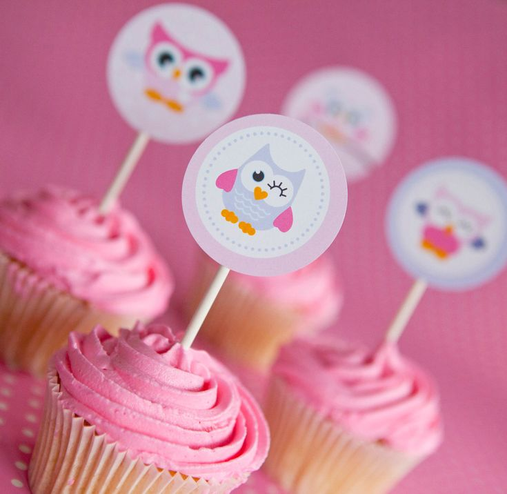If we had cupcakes, something like this could be cute. I bet you could make this, too, Emily!    Cute Baby Owl Cupcake Toppers or Party Circles - Set of 12 - In Pastel Pink and Purple - Cute for a Girls Birthday or Baby Shower. $5.00, via Etsy.