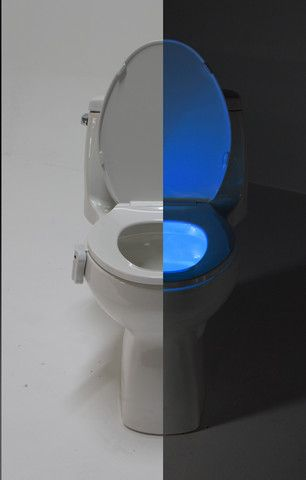 peacock bathroom fun gadgets boiled eggs accent lighting bathroom