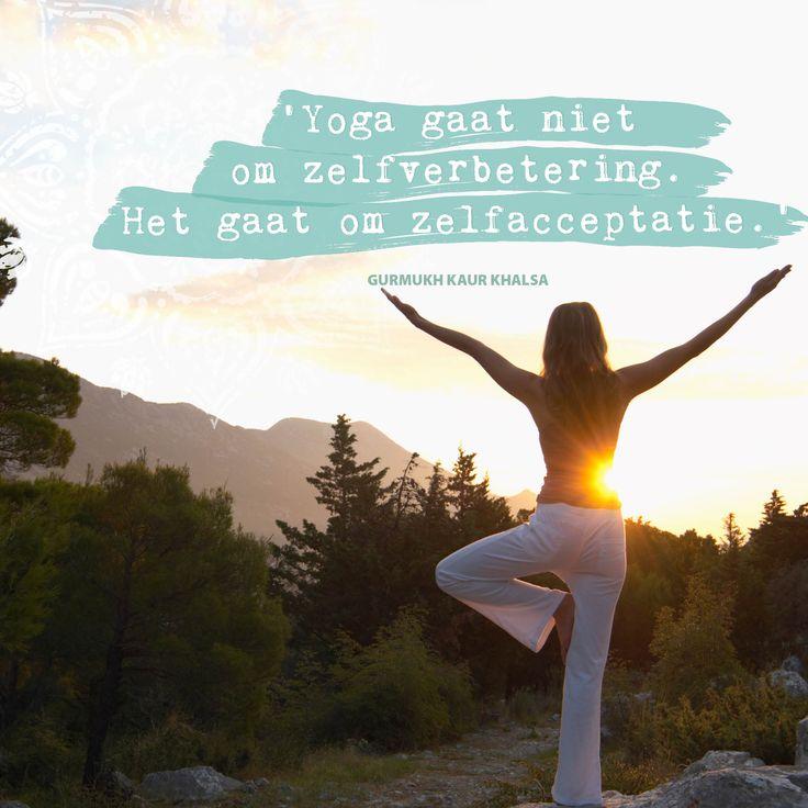 'We willen graag iets teruggeven aan de wereld,' aldus Ratheesh, een bekende Indiase yoga-goeroe. Samen met zijn Zweedse vrouw Caroline, ook yogi, organiseert hij van 4 tot 13 augustus een 10-daagse gratis teacher training voor yogaleraren die zich verder willen bekwamen in hun vak.