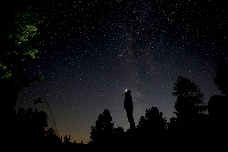 A man takes pictures at night of the annual Perseid meteor shower in the Aleve wood in Pontechianale, near Cuneo, in the Monte viso Alps, Italy, on August 13, 2016.