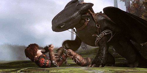 The look on both their faces! Toothless looks so pleased with himself and Hiccup is just like are you kidding me?