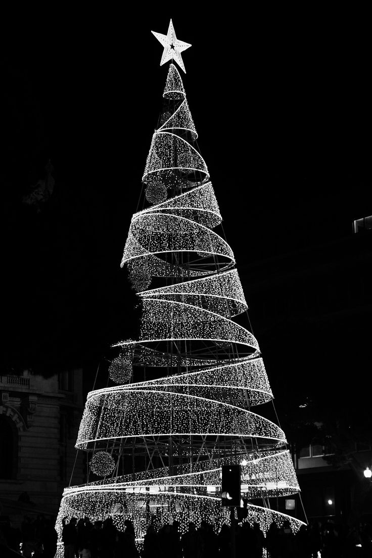 Merry Christmas from Porto - I figure color is the obvious choice to photograph a Christmas tree, but hey, I'm sure you can find lots of color versions of this on the Web. ;) Merry Christmas!