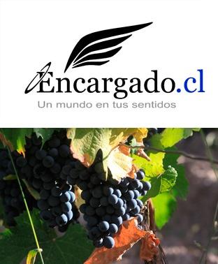 Malbec de Angeles / Mendoza  http://encargado.cl/?p=3341