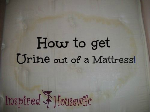 How to Get Pee Stains Out of a Mattress.  I'm kicking myself for not having gotten a waterproof mattress cover for Ben's new mattress!  I hope this works.