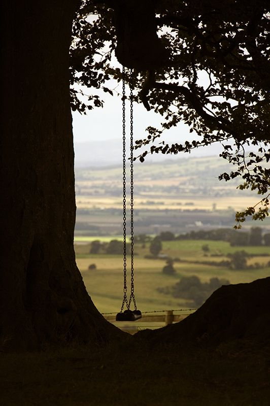 So was I once myself a swinger of birches;   And so I dream of going back to be.   It's when I'm weary of considerations,   And life is too much like a pathless wood