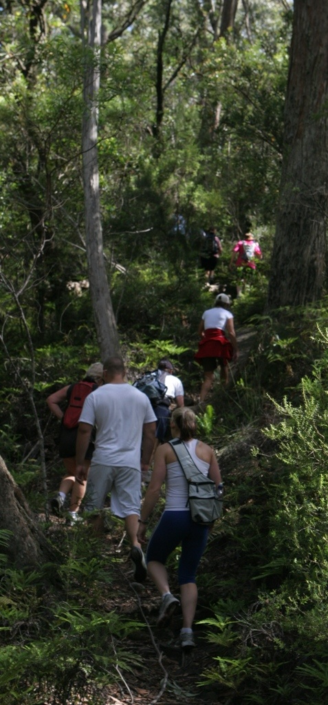 Solar Springs Bushwalks-some easy, others more challenging. All so worth it!