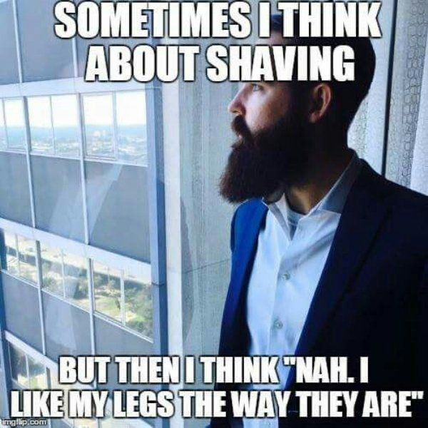 Celebrate No Shave November with some epic beards and beard-related humor (50+ Pics)