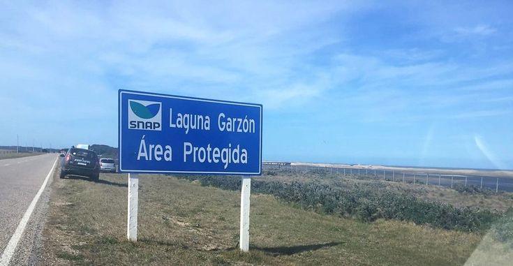 Laguna Garzon Um Roteiro para se apaixonar pelo Uruguai:  Montevideo, Punta del Este, Colonia del Sacramento e Carmelo