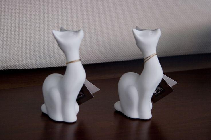 CAT διακοσμητικές γάτες