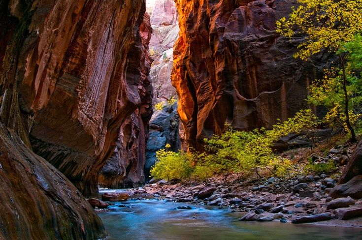 On This Date in 1919 Zion National Park Utah, USA was established!