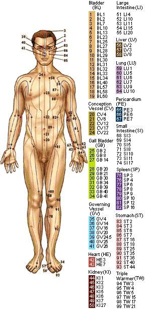 Acupressure Point Chart                                                       …