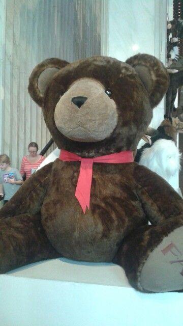 LOOK AT THIS HUGE TEADY BEAR!!