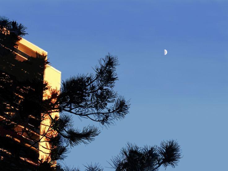 Early Evening Moon on High Park Avenue