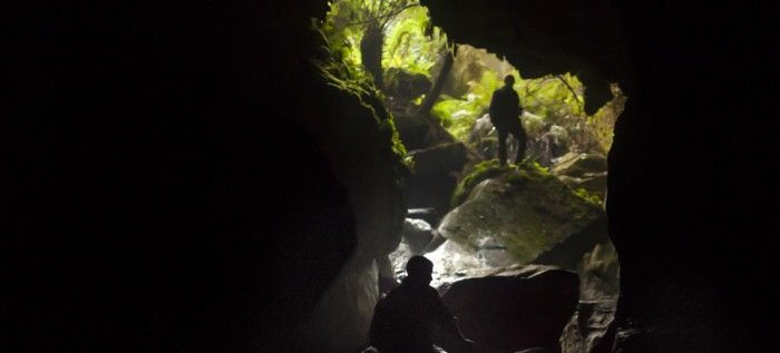 TasTrails - Mystery Creek Cave
