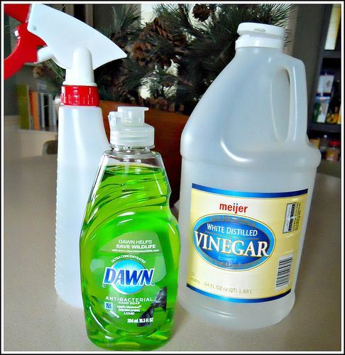 Do-It-Yourself: Homemade Shower Cleaner. I'm trying this tonight!