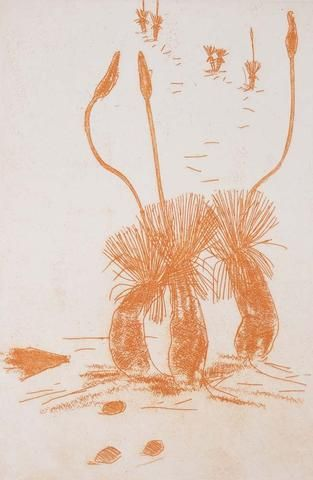 Clifton Pugh 'Grass Trees' - Etching